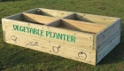 Vegetable Planter 1